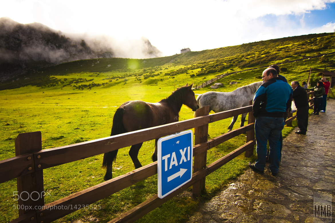 Photograph Taxi!! by MMB Fotografía Adolfo Gris on 500px