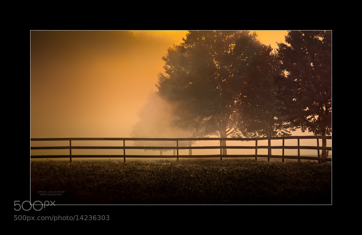 Photograph Fenced-in Fog by Paul Jolicoeur on 500px