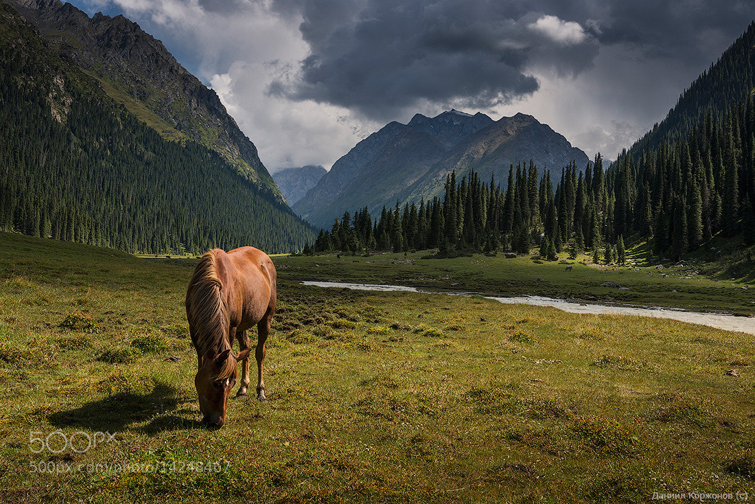 Photograph Tien-Shan by Daniel Kordan on 500px