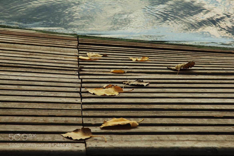 Photograph Untitled by Harun Bidar on 500px
