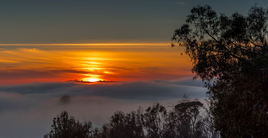 What a foggy sunset! by Thomas Blumer on 500px.com