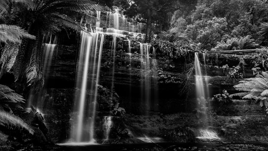 Russell Falls Mount Field National Park Tasmania Australia by Travis Chau on 500px.com