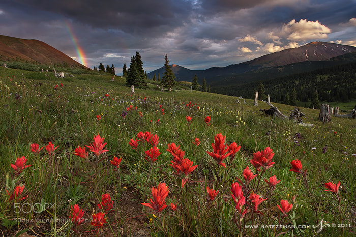 Photograph Silverheels Sunset by Nate Zeman | natezeman.com on 500px