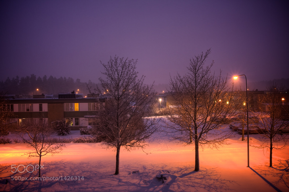 Photograph Winter Dusk by James Brooks on 500px