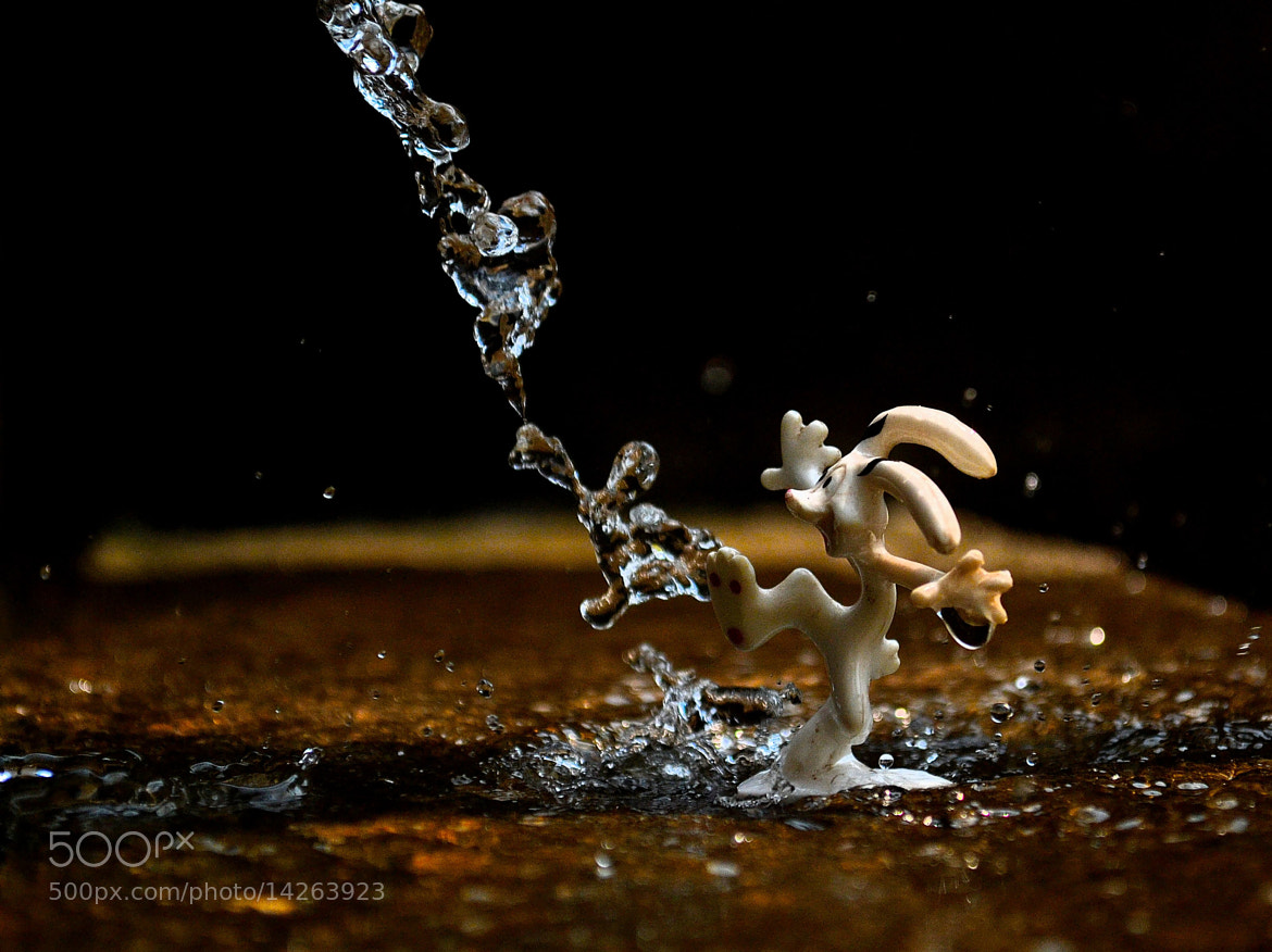 Photograph ::SpLaSh:: by bosco bosco on 500px