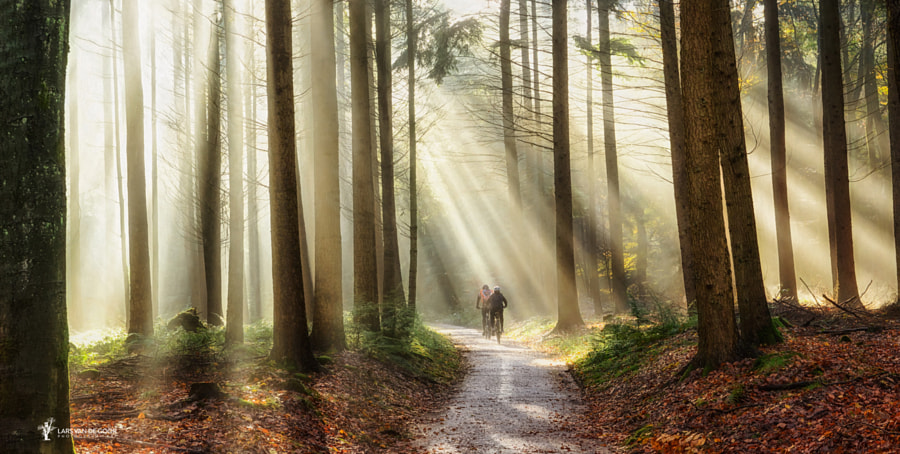 A Blisfull Ride by Lars van de Goor on 500px.com