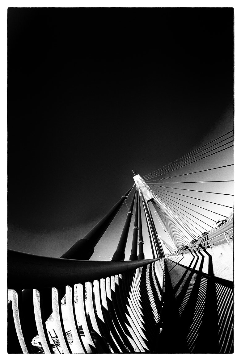 Photograph Anzac Bridge by James P Guiney on 500px