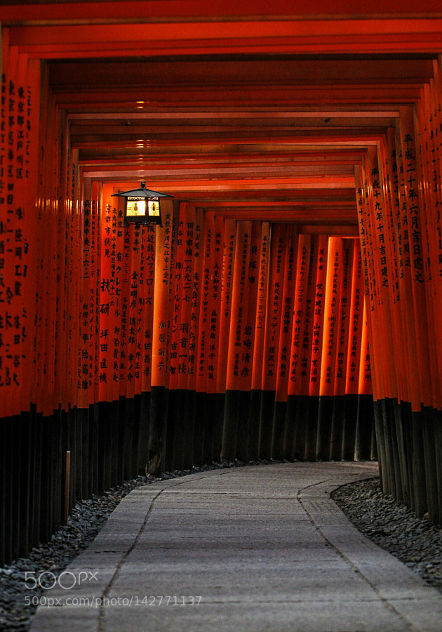 The gates of Fushimi Inari
