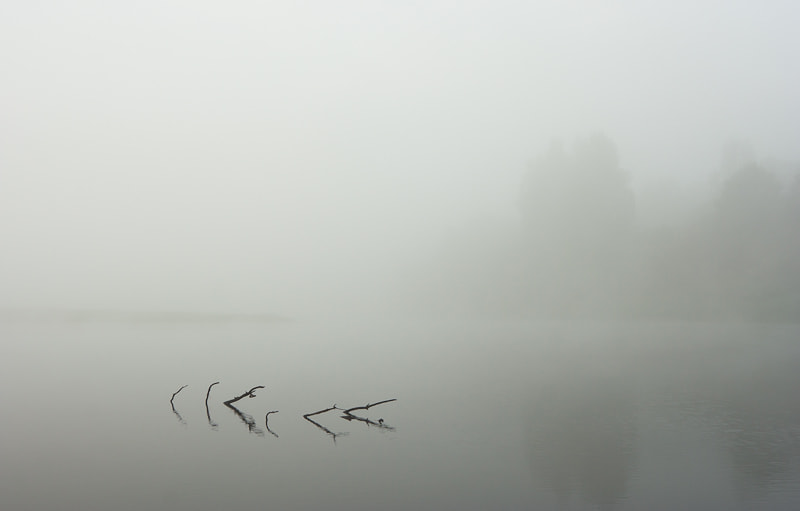 Photograph About a fog and silence by Gorshkov Igor on 500px