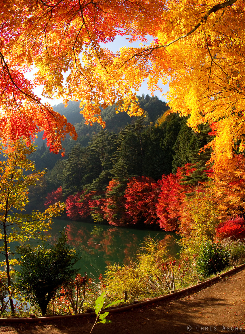 Photograph Inagakko in Fall by Chris Asche on 500px