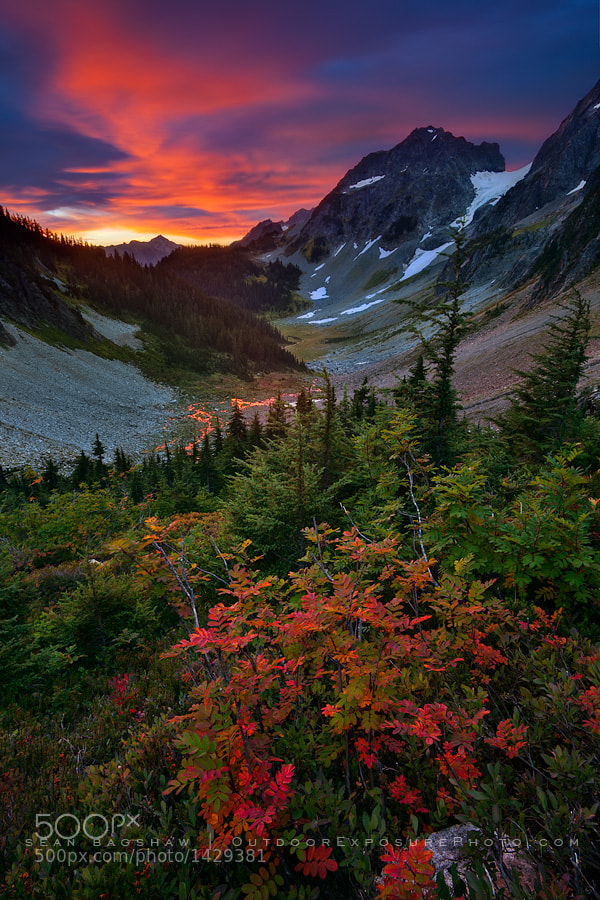 Photograph Unforgettable Fire by Sean Bagshaw on 500px