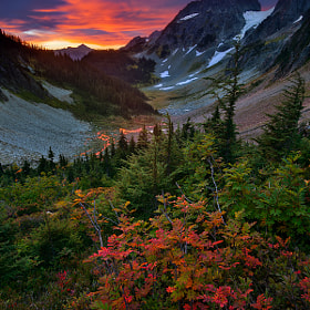 Unforgettable Fire by Sean Bagshaw (Sean_Bagshaw)) on 500px.com