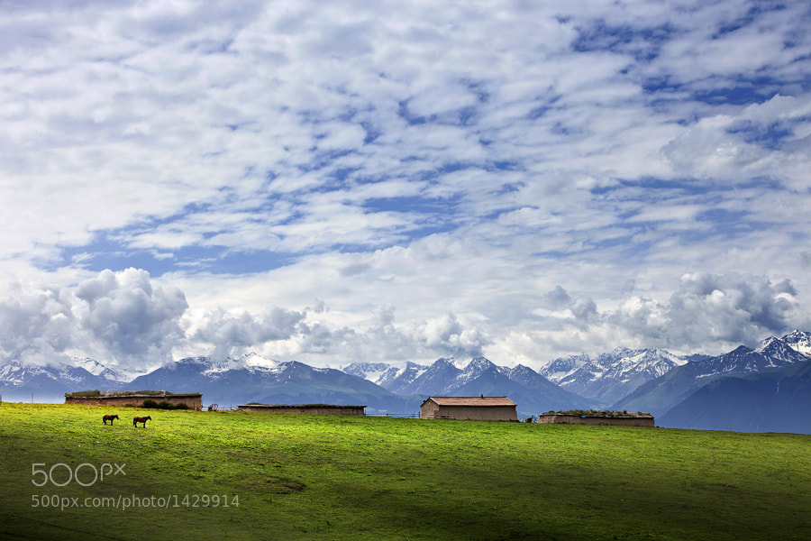 Photograph Road to Tien Shan, China by jayspy on 500px