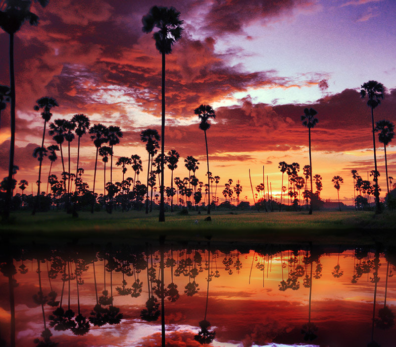 Photograph Fantastic sky II by Prachit Punyapor on 500px