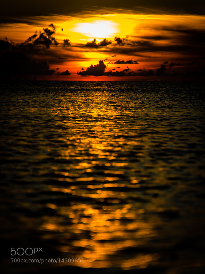 Photograph Sunset by Martin Irwin on 500px