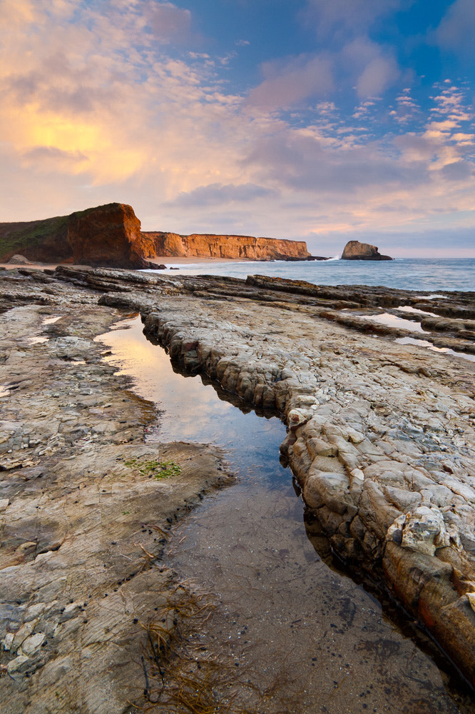 Photograph Panther Beach by Lukas Wenger on 500px