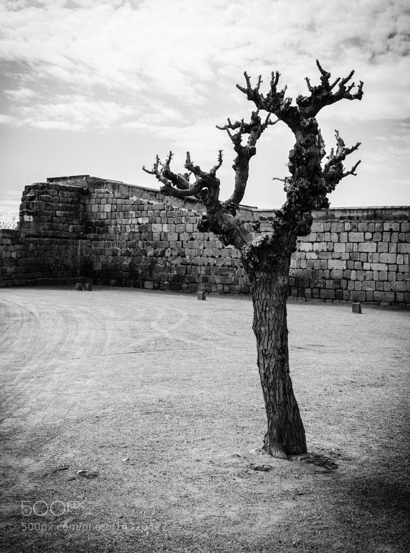Photograph Moorish Fortress by Enrico Maria Crisostomo on 500px