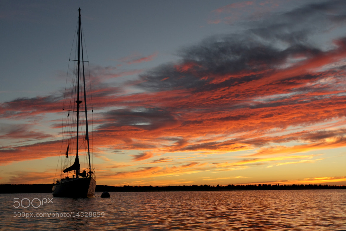 Photograph Sailboat sunset by Don Parkinson on 500px
