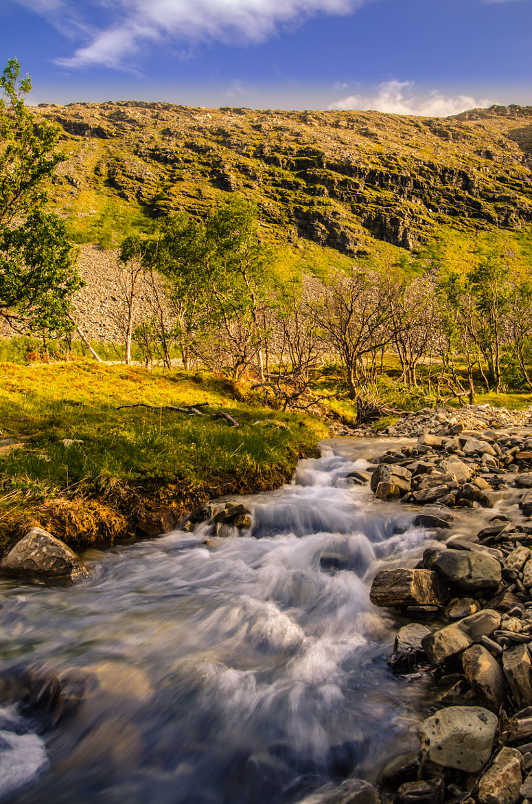 Photograph Untitled River by Tor Egil Rasmussen on 500px