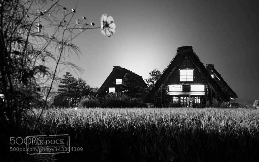 Night in Shirakawa II