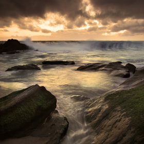 Homage To The Sea by Ron  Azevedo (Rondo)) on 500px.com