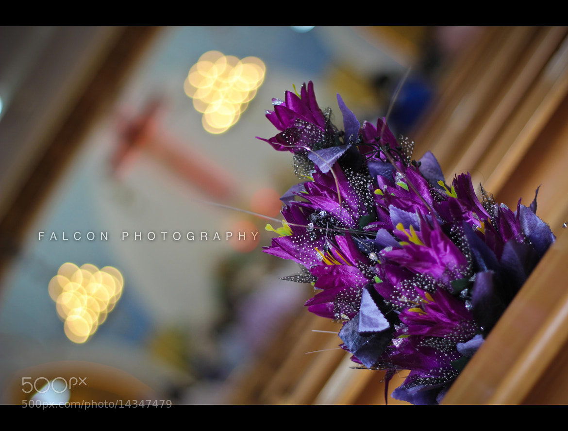 Photograph The Bouquet & bokeh by Falcon Fotography on 500px