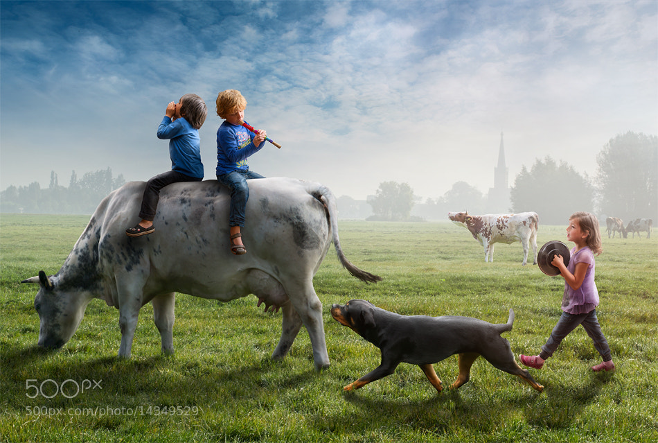 Photograph The Odd Parade by Adrian Sommeling on 500px