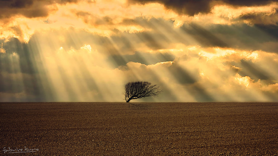 Light by Fabrice Kurz on 500px.com