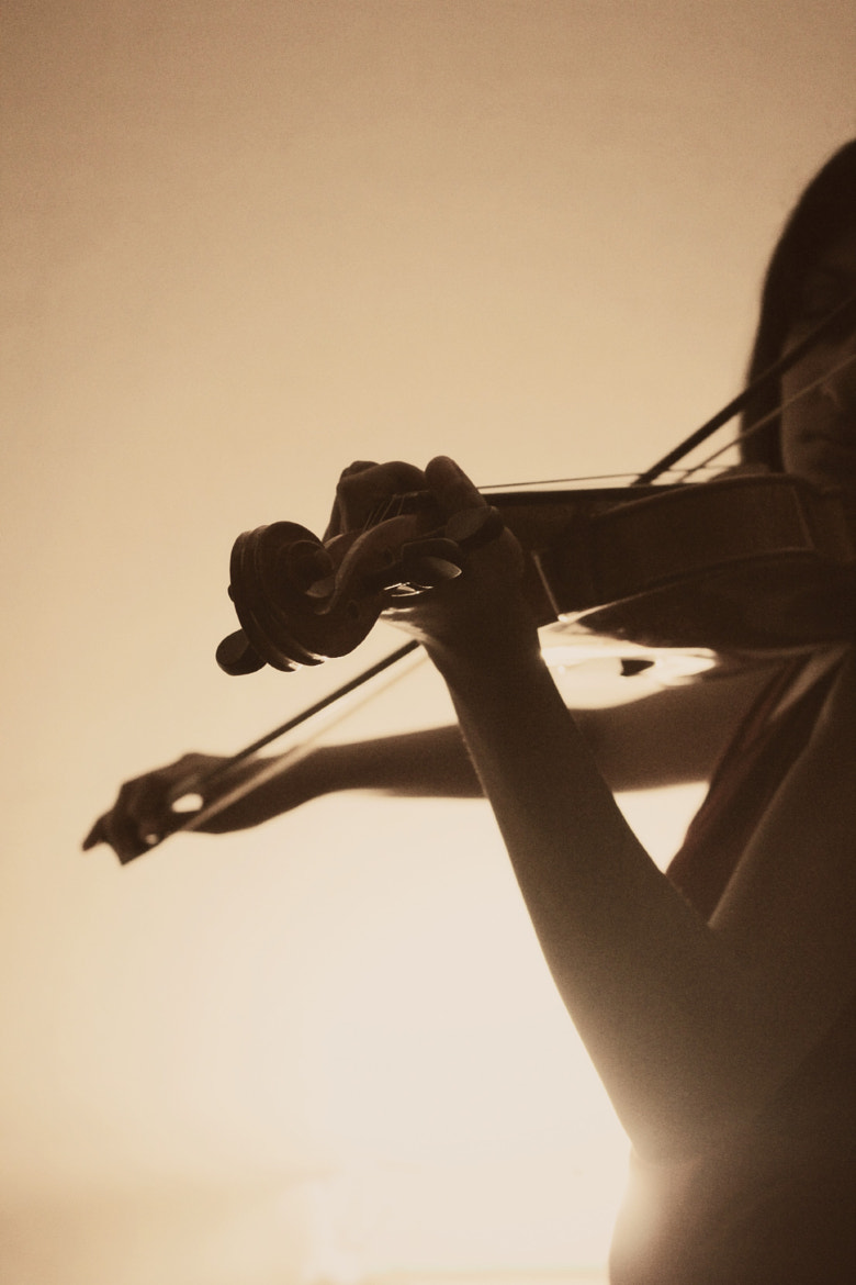 Photograph Violinist by Shweta Patil on 500px