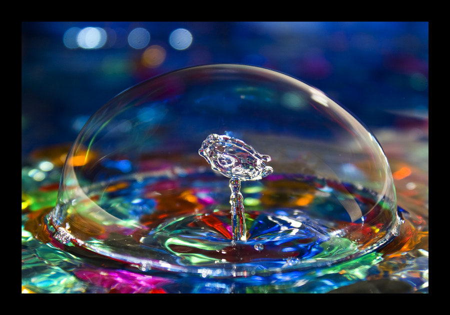 Photograph Crystal Rose by Sergio Blanco on 500px