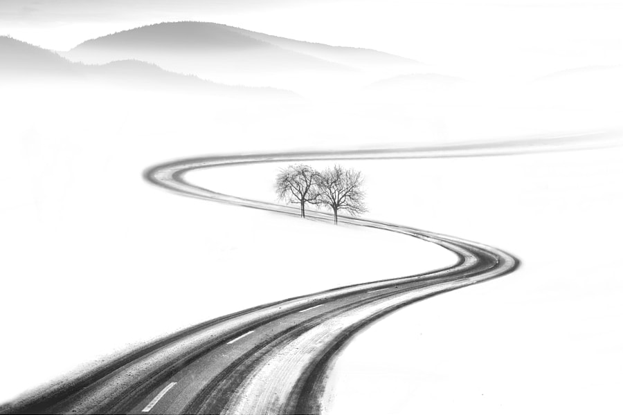 the road to spring by nikos Bantouvakis  on 500px.com