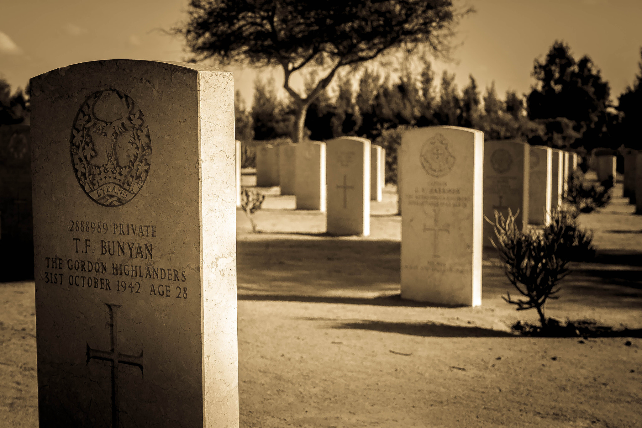Photograph Immortals of World War II  by Mohamed Hegazi on 500px