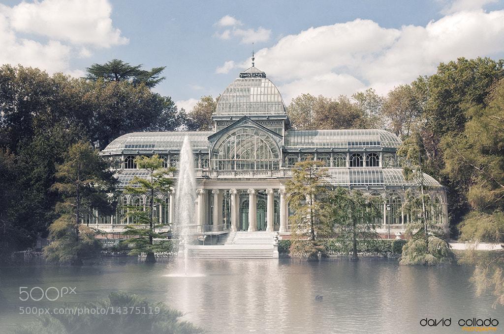 Photograph Palacio de cristal by David Collado on 500px