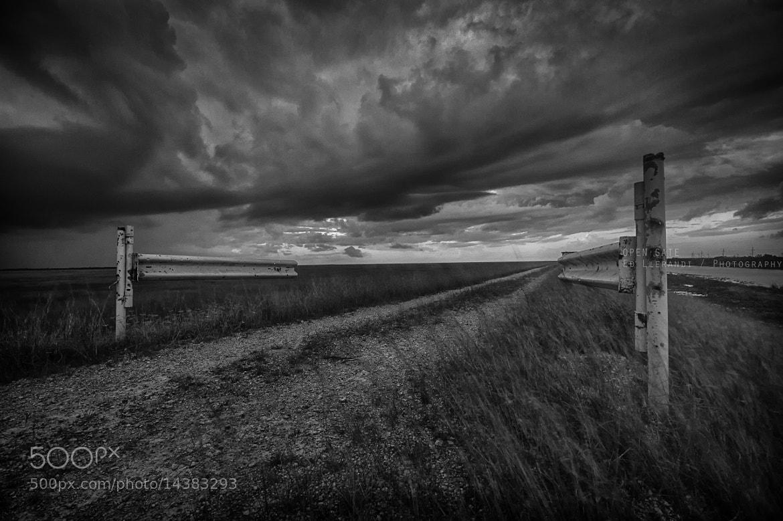 Photograph Open Gate by Eduardo Llerandi on 500px