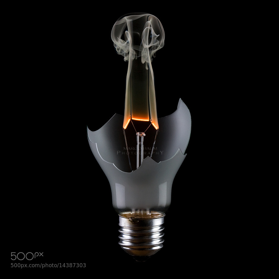 end of the bulb