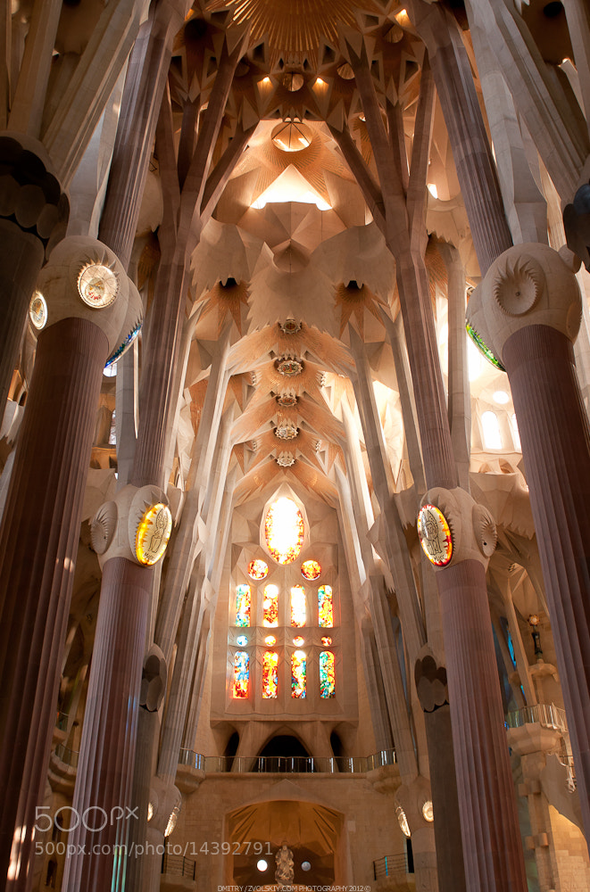 Photograph Sagrada Familia by Dmitry Zvolskiy on 500px