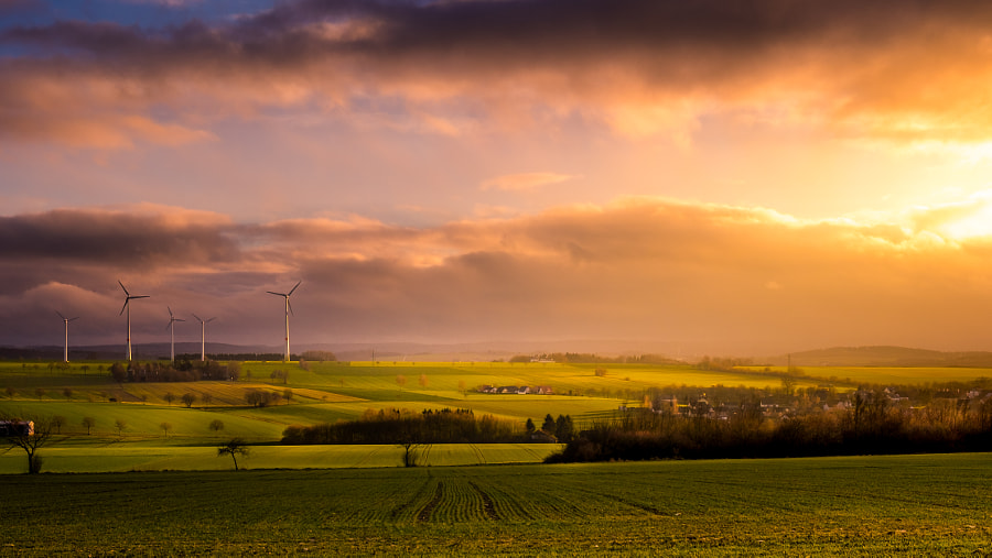 Breaking Sun by HatCat Photography 1