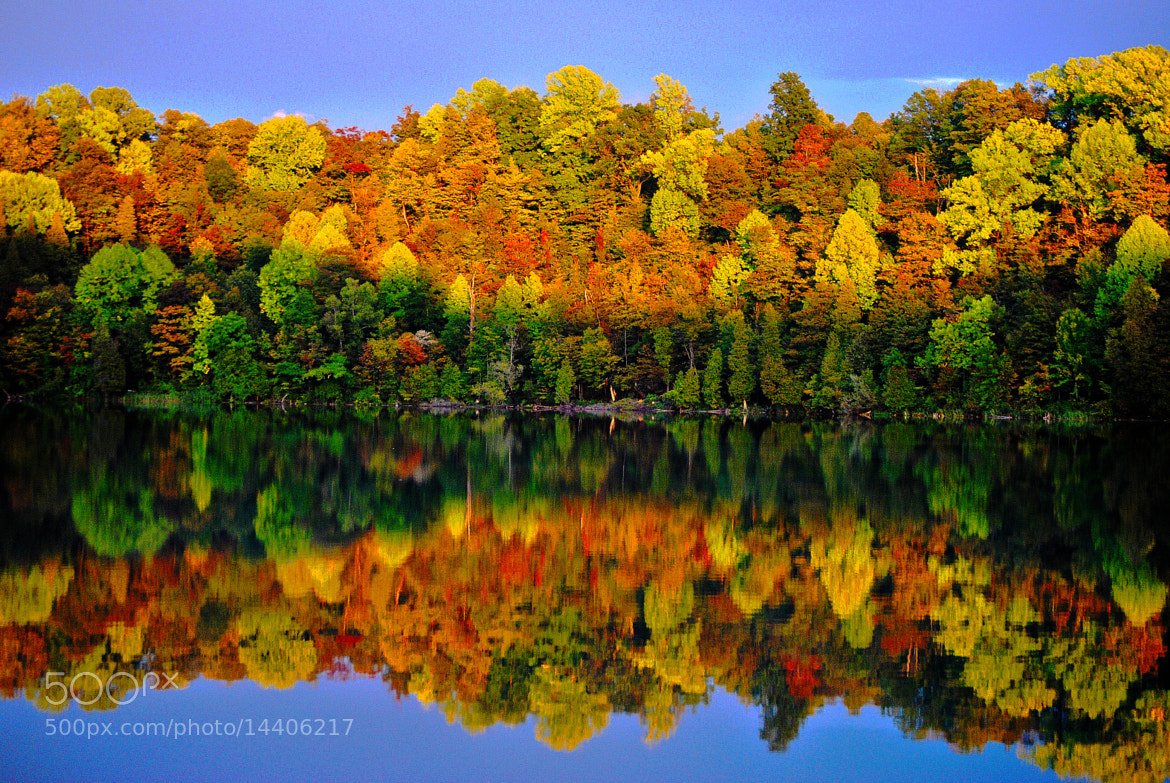 Photograph Fall Day 1 by cheryl rendino on 500px