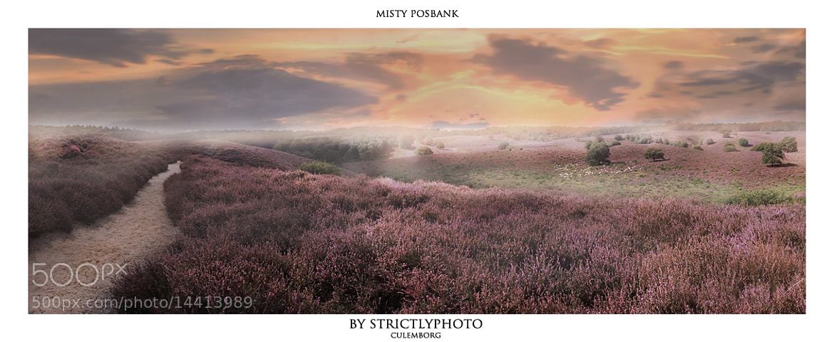 Photograph morning mist on the posbank by Patrick Strik on 500px