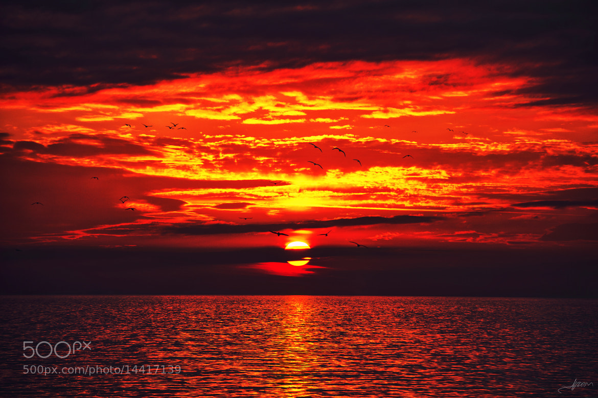 Photograph Colours of the Glowing Sky by Alp Cem on 500px