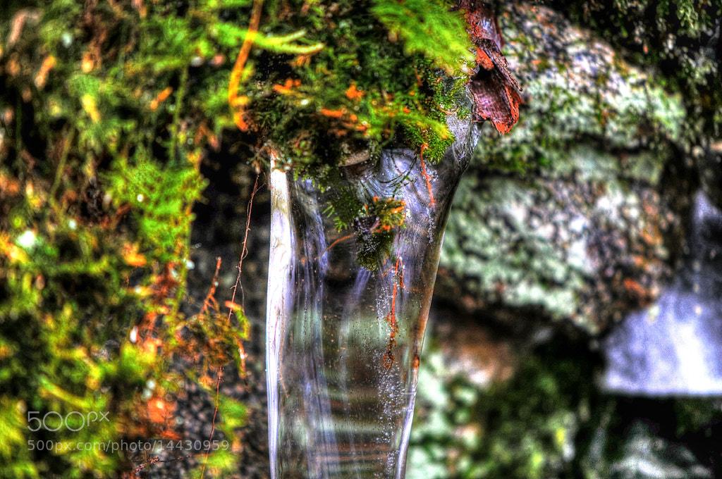Photograph Frozen time... by Almqvist Photo on 500px