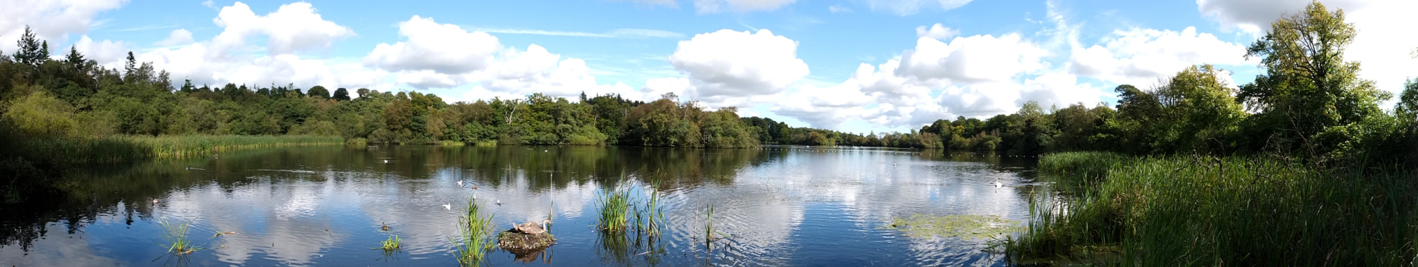 Photograph Bolam Lake panorama by Chris Neale on 500px