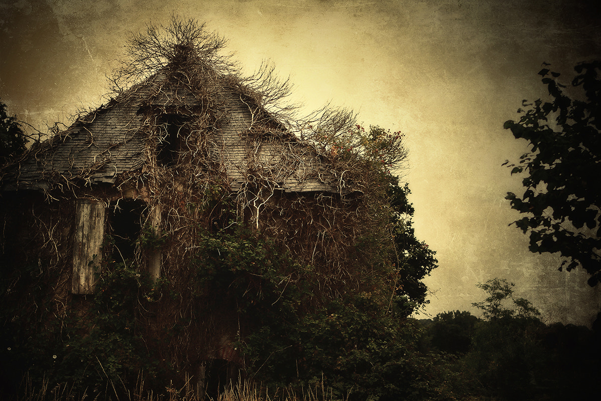 Photograph The haunted House v2 by Remy Perthuisot on 500px