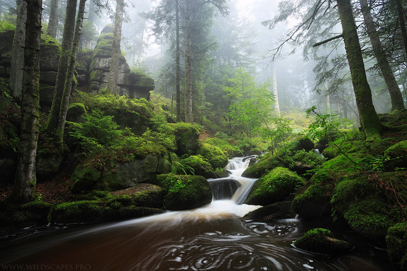 Photograph Mystic River by Maxime Courty on 500px