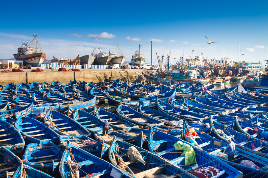 Essaouira - Magador port, Marrakech, Morocco. by Matej Kastelic on 500px.com