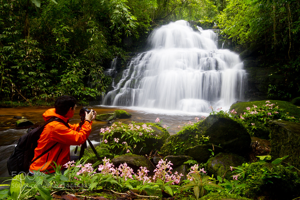 Photograph Deep forest Waterfall in Thailand by Nara Postcardonline on 500px