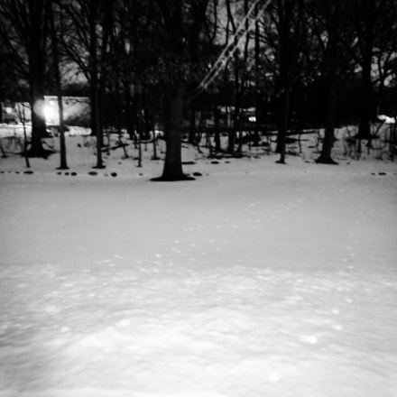 Black and white snow, Nikon COOLPIX S4100