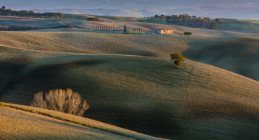 Photograph Tuscan fields in afternoon light. by Hans Kruse on 500px