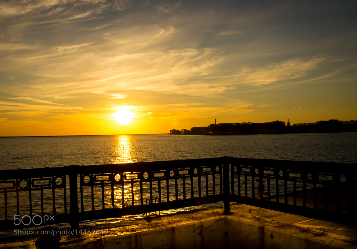 Photograph Sunrise at Navy Pier by Roberta Przy on 500px