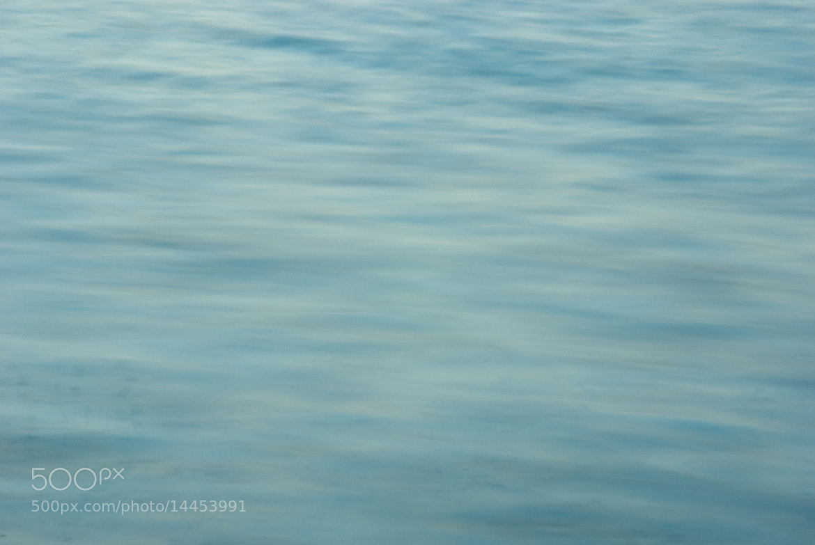 Photograph mer #7 by David Rodriguez on 500px